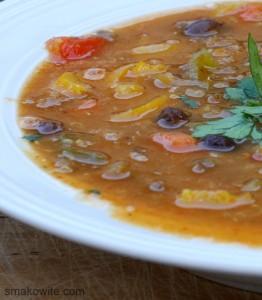 zupa paprykowa z warzywami 3